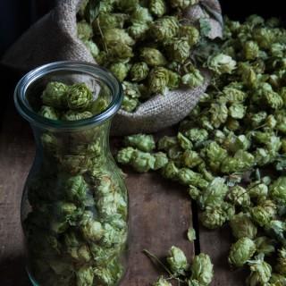 missfoodwise-regula-ysewijn-hop-brandy_0674