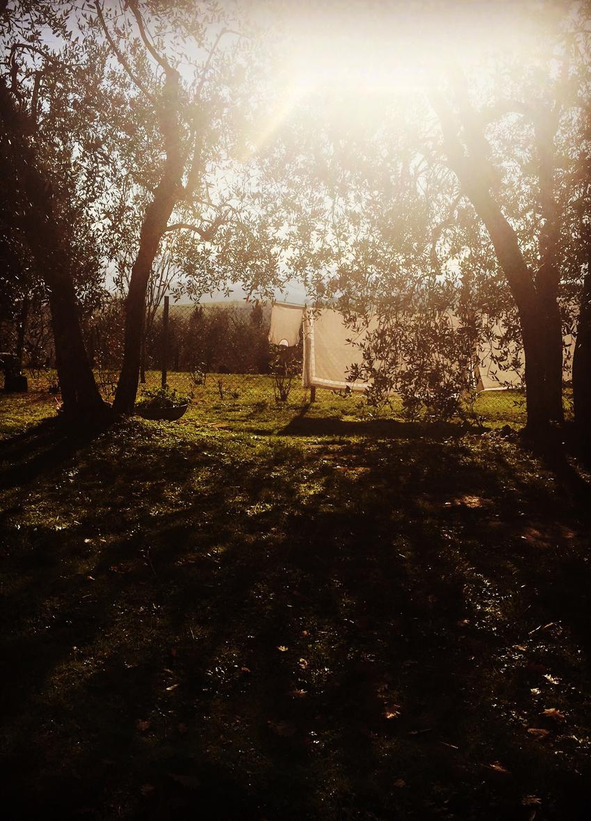 Creative-Gathering-Three-Acres-Tuscany-regula-ysewijn-2