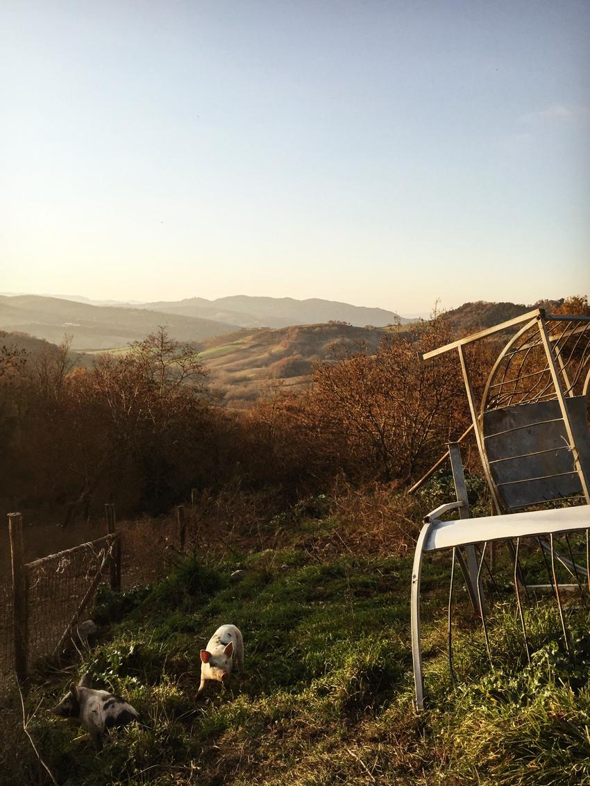Creative-Gathering-Three-Acres-Tuscany-regula-ysewijn